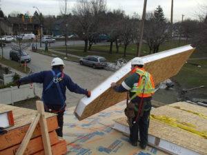 SIP Roof Panel for YMCA Project